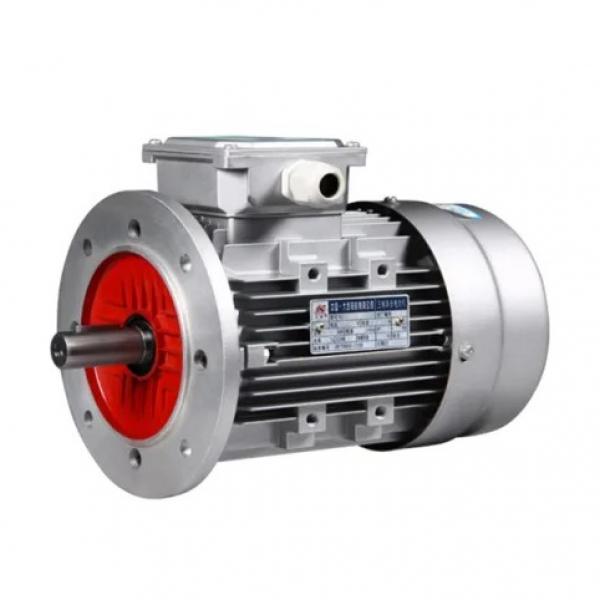 Vickers PV063R1K1T1NFRZ+PVAC1ECMNSYW20 Piston Pump PV Series #2 image