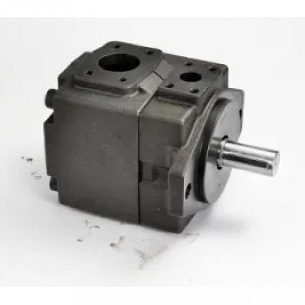 Vickers PV080R1K1J3NFDS+PV023R1L1T1NMM Piston Pump PV Series #3 image