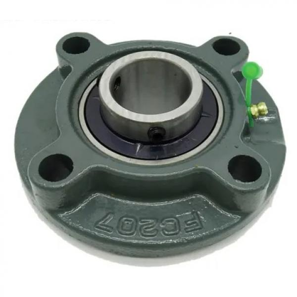 DODGE F4B-GTM-65M  Flange Block Bearings #1 image